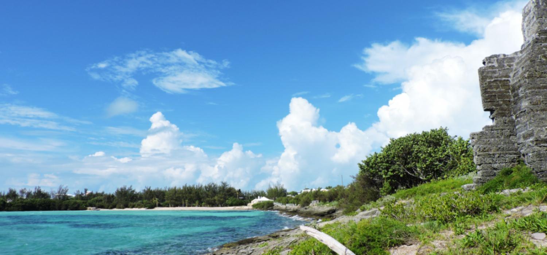 Shelly Bay Beach